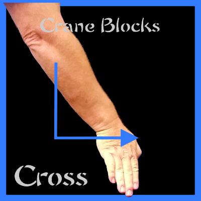Crane Kung Fu Blocks