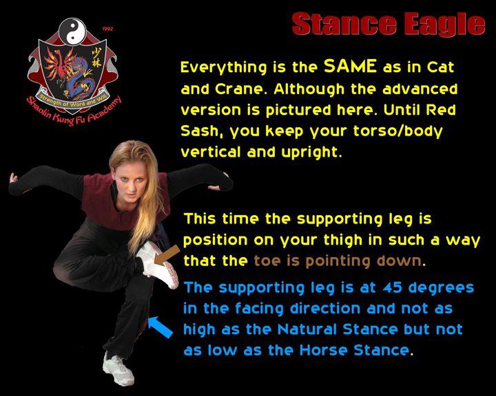 Kung Fu Network, Yellow Sash Stance Eagle (Flying)